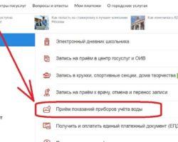 Показания на сайте Госуслуг Москвы 1