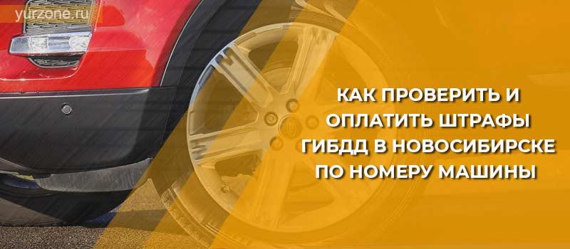Как проверить и оплатить штрафы ГИБДД в Новосибирске по номеру машины